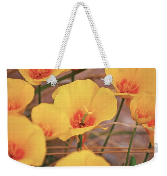 Poppies On Mount Lemmon Weekender Tote Bag
