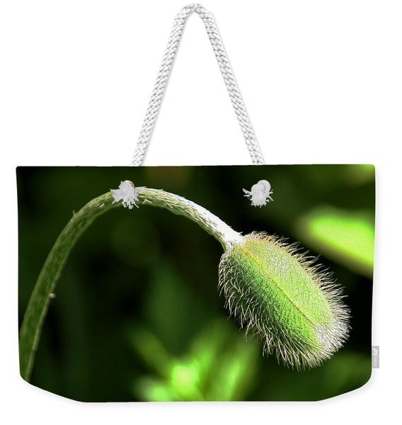 Weekender Tote Bag featuring the photograph Poppy Bud In Sunlight by William Selander