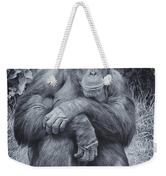 Portrait Of A Chimp Weekender Tote Bag
