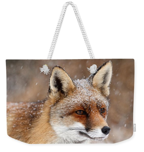 Portrait Of A Red Fox In A Snow Storm Weekender Tote Bag