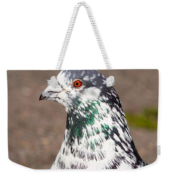 Portrait Of Pigeon Weekender Tote Bag
