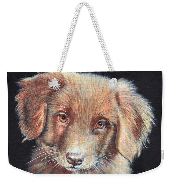 Portrait Of Toby Weekender Tote Bag