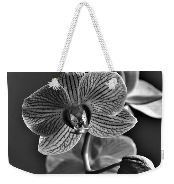 Weekender Tote Bag featuring the photograph Pretty Orchid Bw by Jeremy Hayden