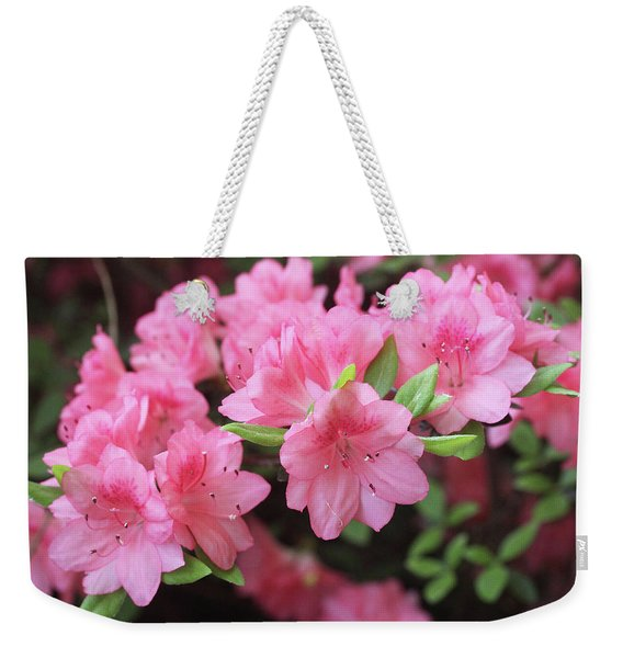 Pretty Pink Azalea Blossoms Weekender Tote Bag