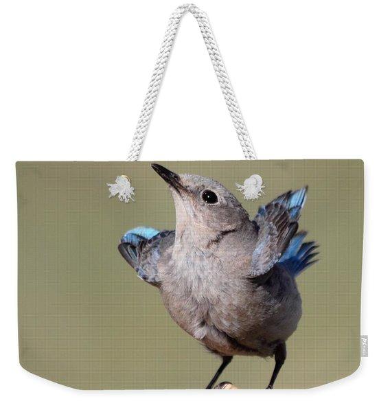 Pretty Pose Weekender Tote Bag