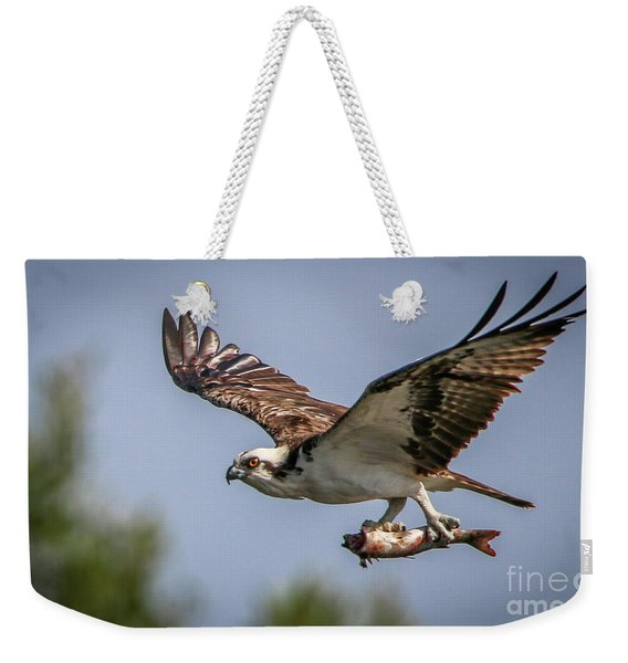 Weekender Tote Bag featuring the photograph Prey In Talons by Tom Claud
