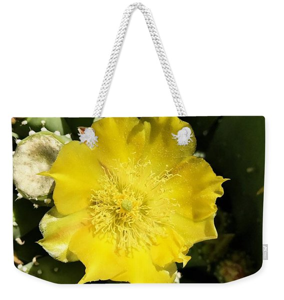 Prickly Pear And The Bee Weekender Tote Bag