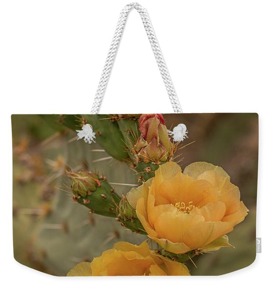 Prickly Pear Blossom Trio Weekender Tote Bag
