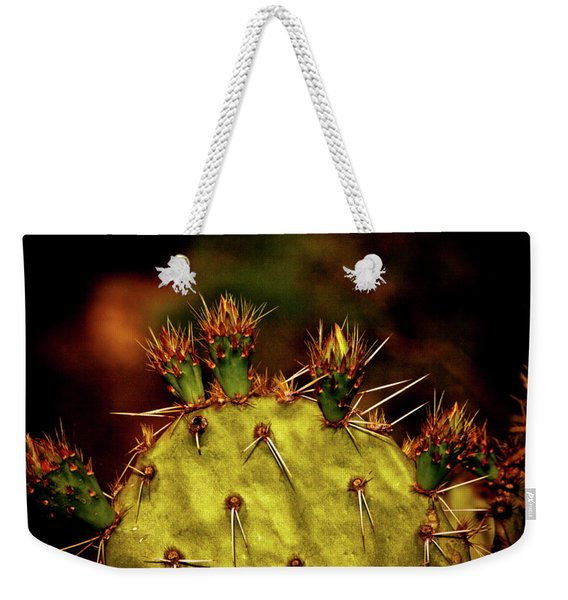 Prickly Pear Spring Weekender Tote Bag