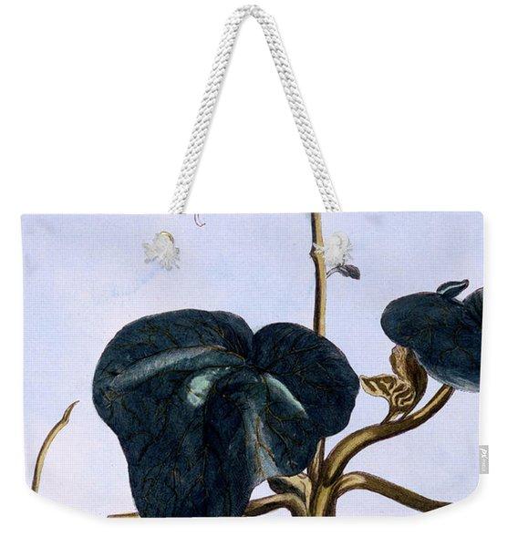 Proboscis Flower Weekender Tote Bag