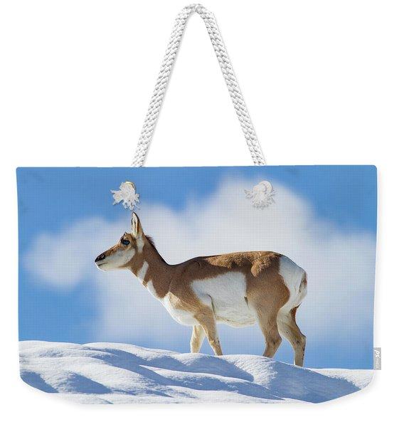 Pronghorn Doe On Snowy Ridge Weekender Tote Bag