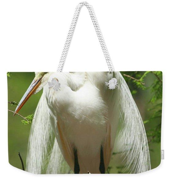 Protecting Weekender Tote Bag
