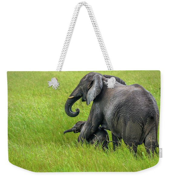 Protective Elephant Mom Weekender Tote Bag