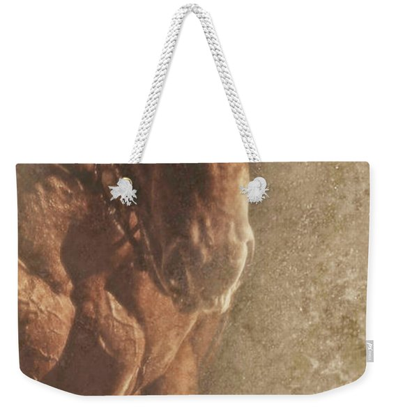 Prowess And Power Weekender Tote Bag