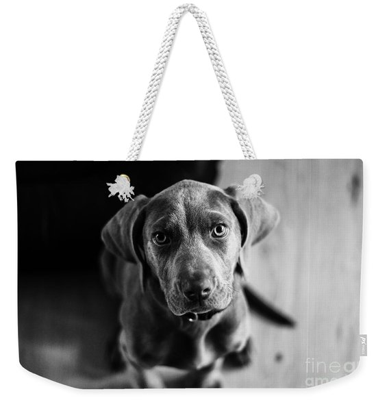 Puppy - Monochrome 1 Weekender Tote Bag