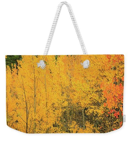 Pure Gold Weekender Tote Bag