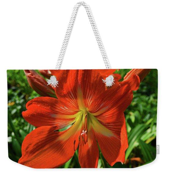 Pure Joy Amaryllis Weekender Tote Bag