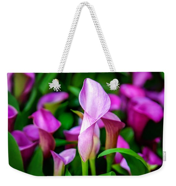 Purple Calla Lilies Weekender Tote Bag