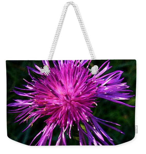 Purple Dandelions 4 Weekender Tote Bag