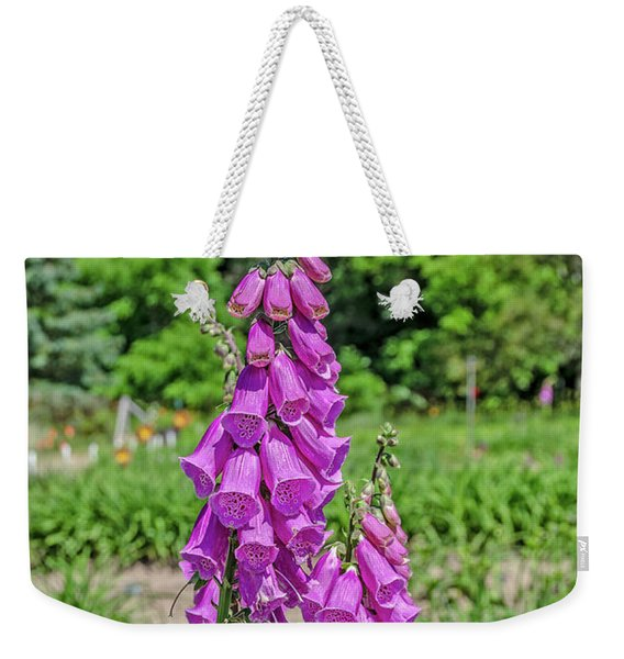 Purple Foxglove Digitalis Purpurea L Weekender Tote Bag