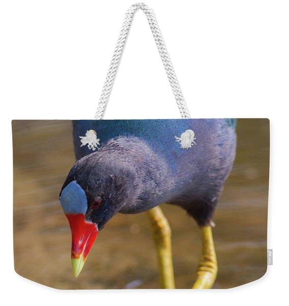Purple Gallinule Bigfoot Weekender Tote Bag