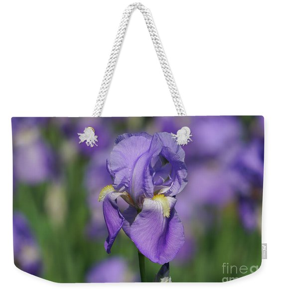 Purple Iris Fields Forever Weekender Tote Bag