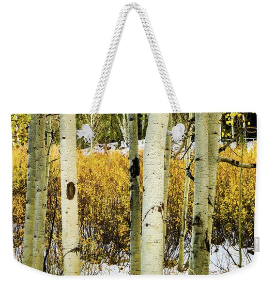 Quakies And Willows In Autumn Weekender Tote Bag