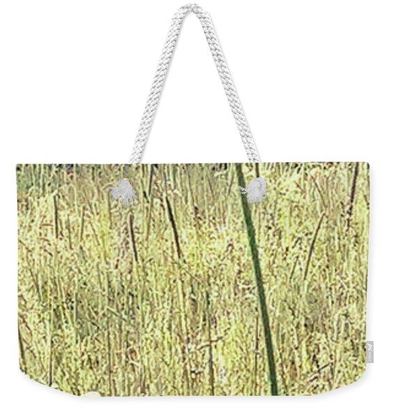 Queen Anne Weekender Tote Bag