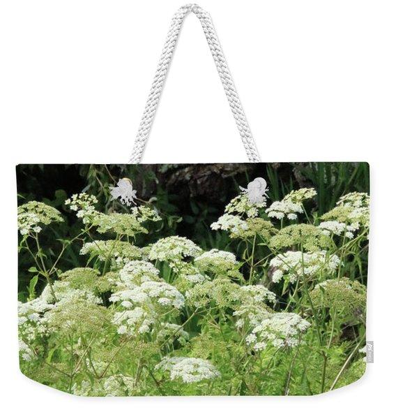 Queen Annes Lace Daucus Carota Weekender Tote Bag