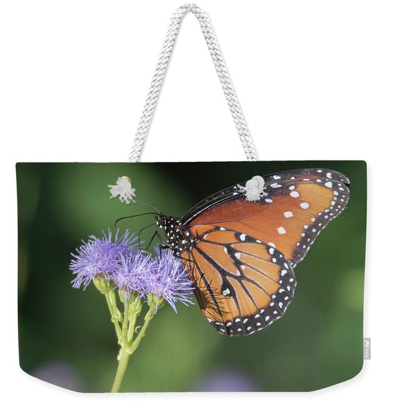 Queen Butterfly 7474-101017-1cr Weekender Tote Bag