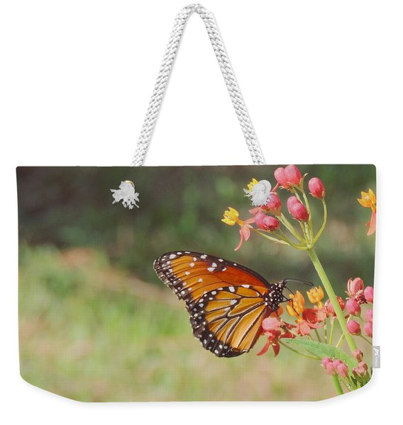 Queen Butterfly On Milkweed Weekender Tote Bag