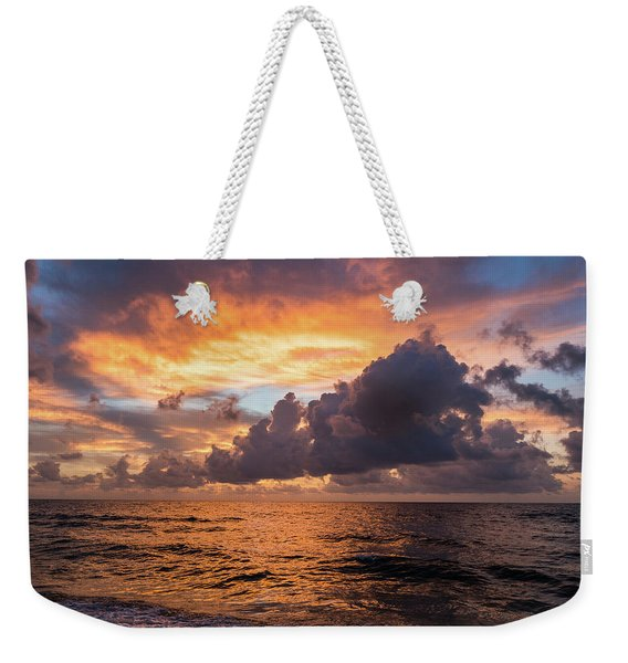 Weekender Tote Bag featuring the photograph Quiet Beauty by Robin Zygelman