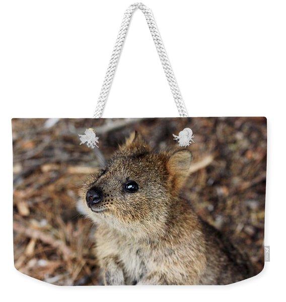 Quokka Weekender Tote Bag