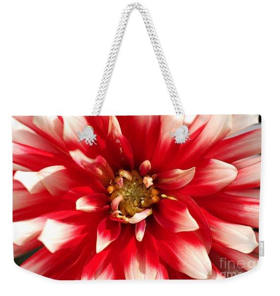 Radiant Dahlia Weekender Tote Bag
