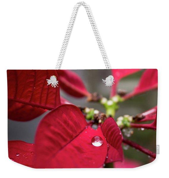 Rain Drop On A Poinsettia  Weekender Tote Bag