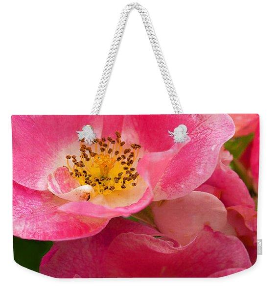 Rain-kissed Roses Weekender Tote Bag