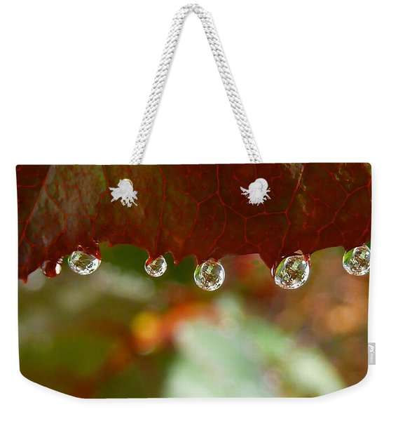 Weekender Tote Bag featuring the photograph Raindrops On A Red Leaf by Patricia Strand