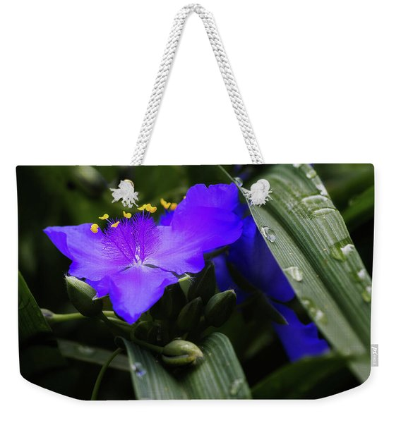 Raindrops On Spiderwort Flowers Weekender Tote Bag