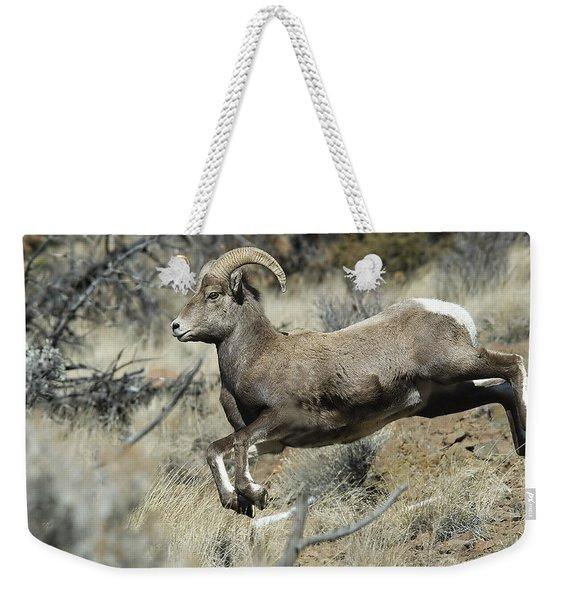 Ram In A Hurry Weekender Tote Bag