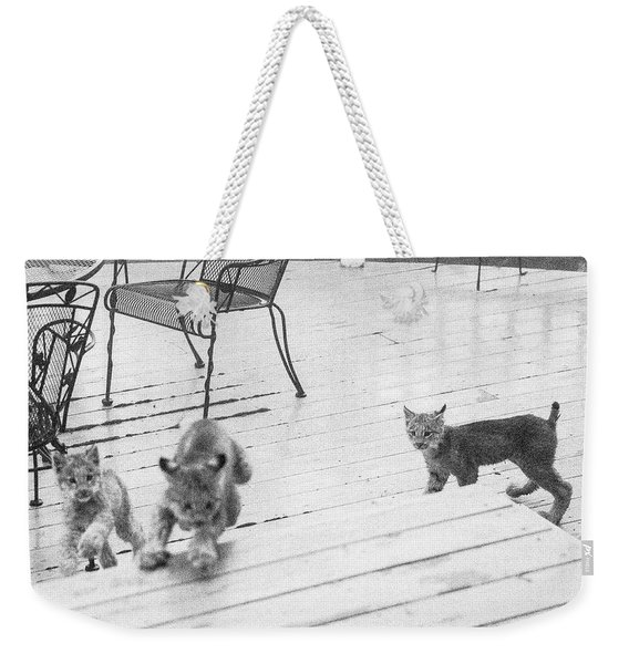 Weekender Tote Bag featuring the photograph Relay Chase by Tim Newton
