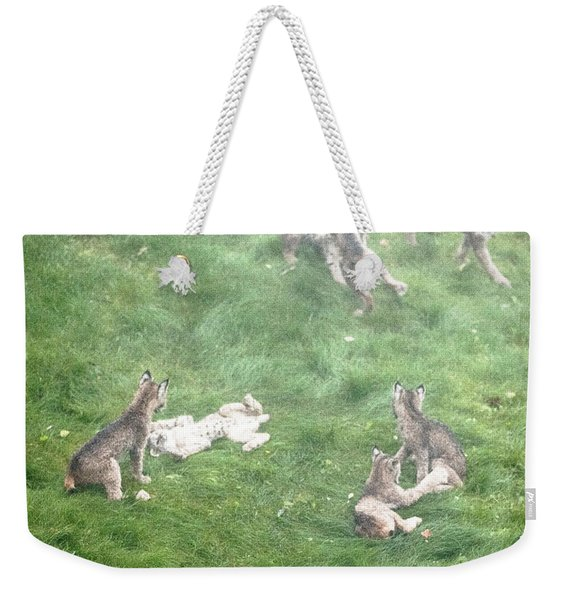 Weekender Tote Bag featuring the photograph Play Together Prey Together by Tim Newton