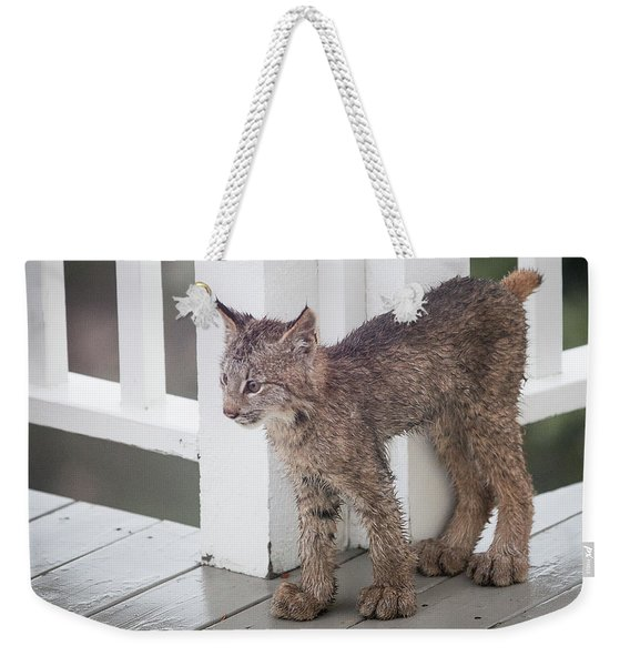 Weekender Tote Bag featuring the photograph Laser Eyes Big Feet by Tim Newton