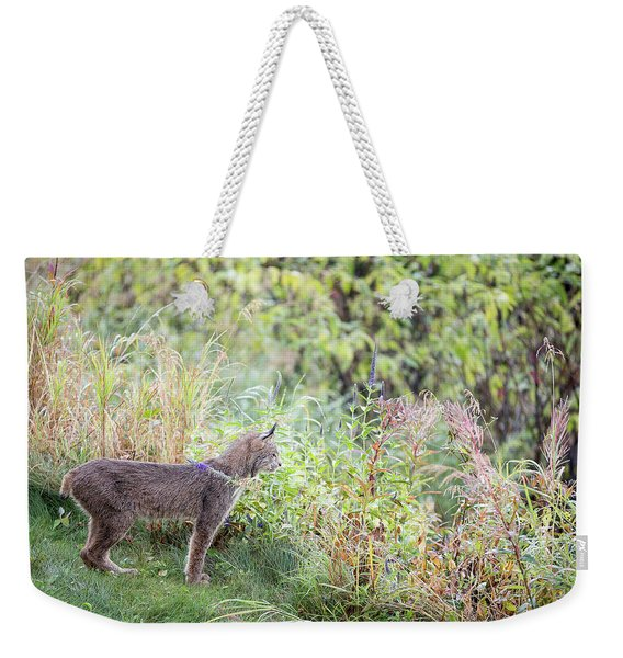 Weekender Tote Bag featuring the photograph Ever Vigilant by Tim Newton
