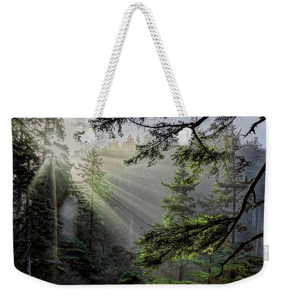 Morning Rays Through An Oregon Rain Forest Weekender Tote Bag