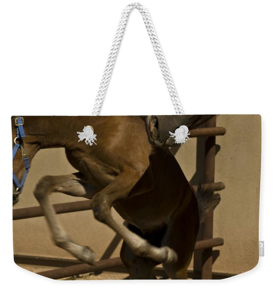 Weekender Tote Bag featuring the photograph Rebellion by Catherine Sobredo