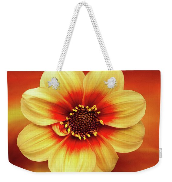 Red And Yellow Inspiration Weekender Tote Bag