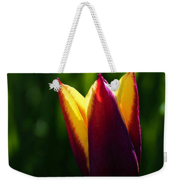 Red And Yellow Tulip Weekender Tote Bag