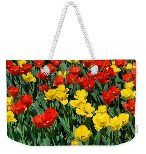 Red And Yellow Tulips  Naperville Illinois Weekender Tote Bag