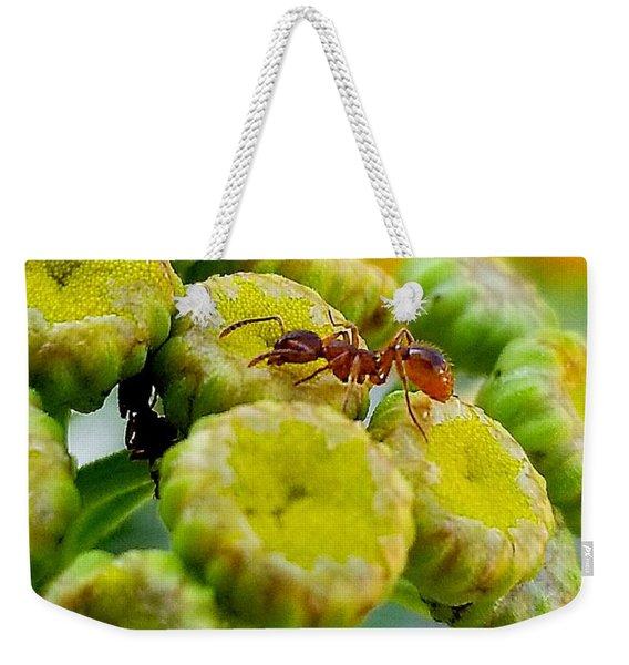 Red Ant Weekender Tote Bag