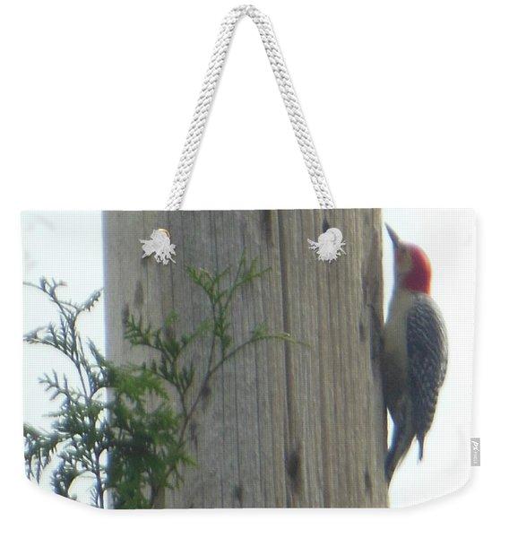 Red Bellied Woodpecker Weekender Tote Bag